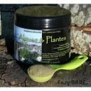 Algues, Plantes et Herbes